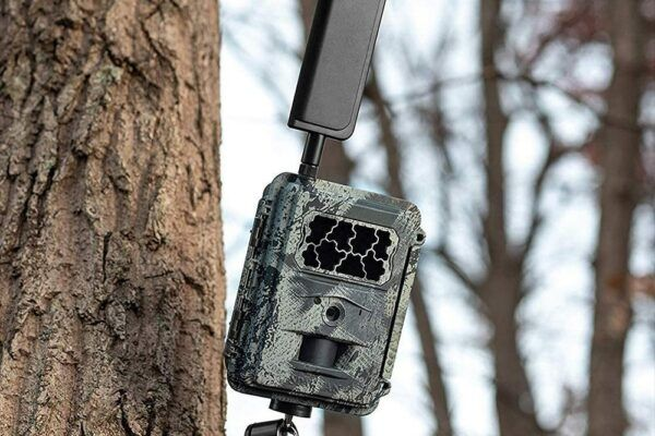 Best Wireless Trail Camera