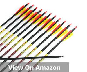 Carbon Arrows Fletched