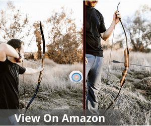 Spyder Takedown Recurve Bow and Arrow
